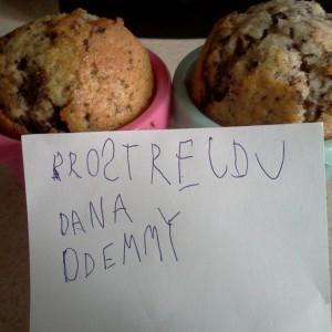Muffiny pro strejdu Dana